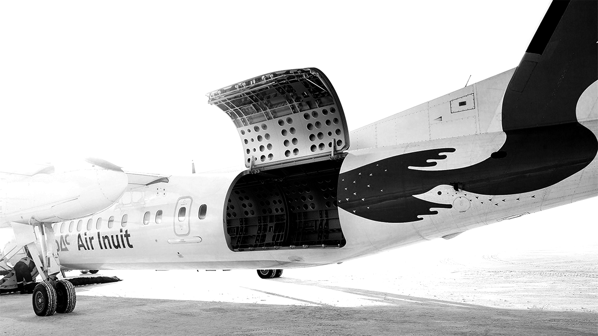 The DHC-8-300 full freight conversion