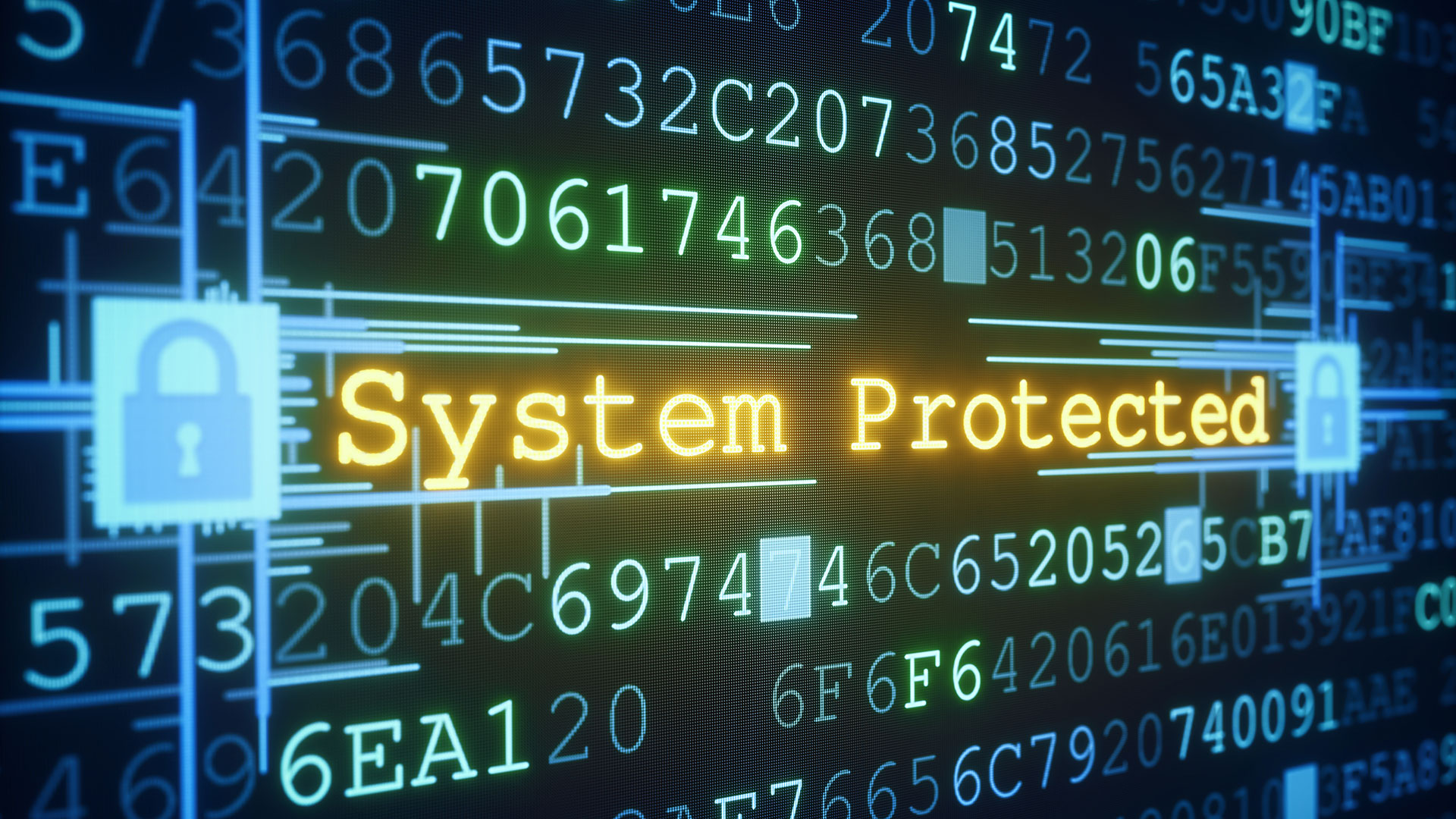 System Protected image