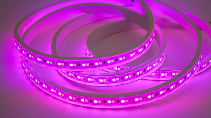 A strip of flexible, magenta-colored Viu lighting